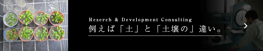 Reserch & Development Consulting